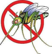 Calendario Interventi disinfestazione zanzare